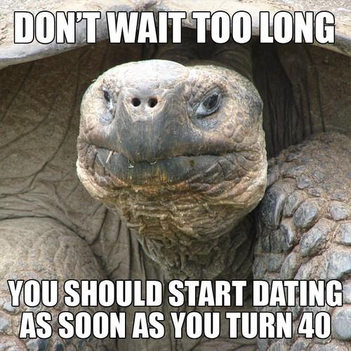 animal dating