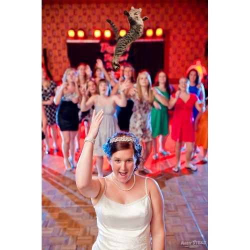 Brides Throwing Cats (1)