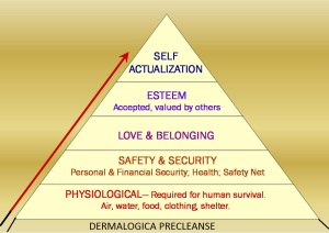 The new altered version of Maslow's Hierachy of Needs thanks to Dermalogica :)